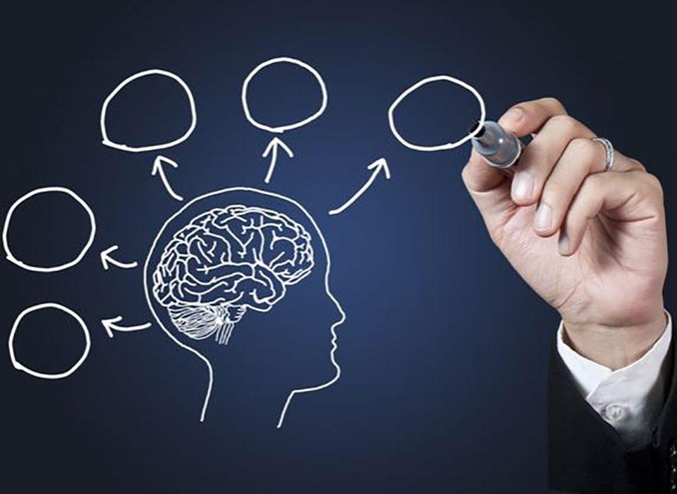 همذات پنداری، اهرمی مهم برای رسیدن به موفقیت2